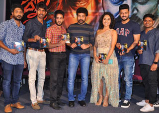 Devi Sri Prasad Movie Audio Launch Photo Gallery