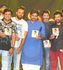 Katamarayudu Movie Pre Release Function Photo Gallery