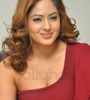 Nikesha Patel Photo Gallery 13