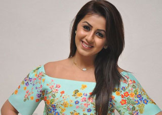 Nikki Galrani Photo Gallery 12