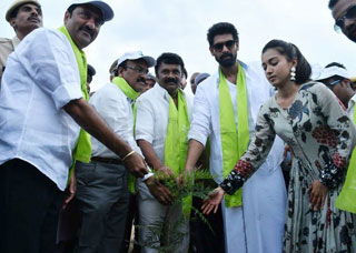 Rana At Haritha Haram Photo Gallery