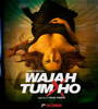 Wajah Tum Ho Movie Audio – Mp3 Songs
