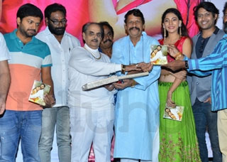 Na Love Story Movie Audio Launch Photo Gallery